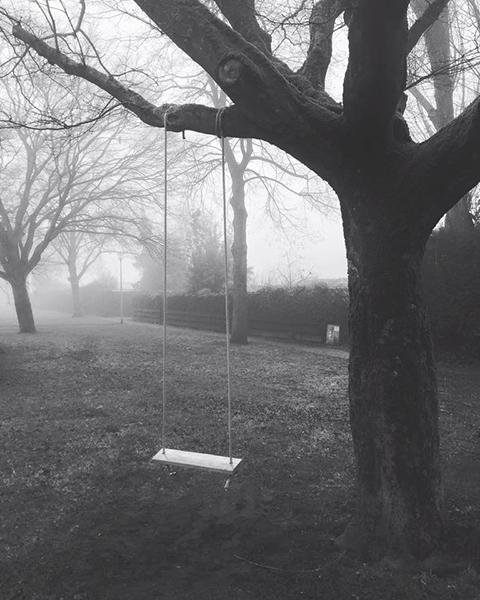 mist, schommel, spookachtig, griezelig, zwart-wit