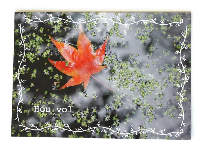 kaart, fotokaart, hou vol, steun, steuntje in de rug, bloem, hersft