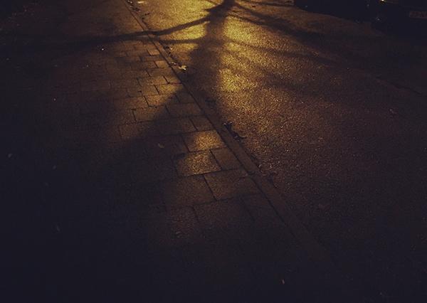 avond, nacht, fotografie, smartphone, boom, schaduw, reflectie, regen, nat