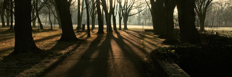 winter, park, licht, schaduw, utrecht, smartphone, iphone, fotografie, natuur