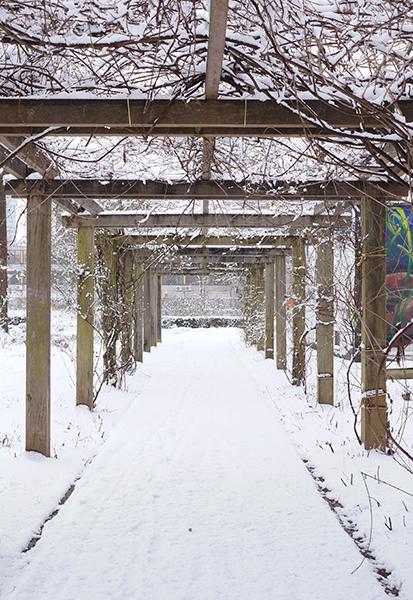 pergola, sneeuw, park, transwijk, utrecht, winter, wit, fotografie, natuur