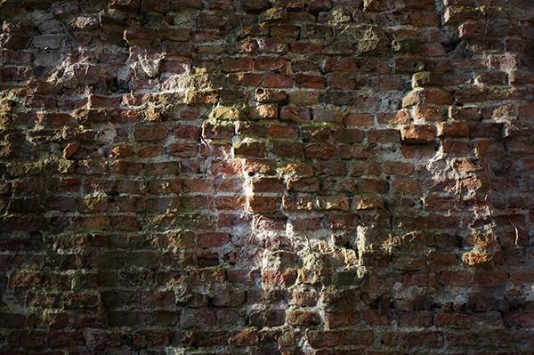 Muur, Utrecht, singel, kleur, structuur, mos