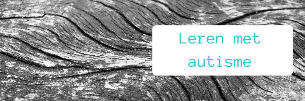 Header blog leren als je autisme hebt